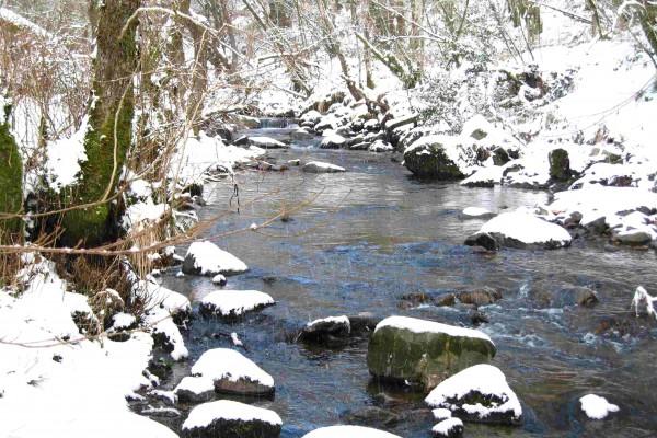 River & Snow